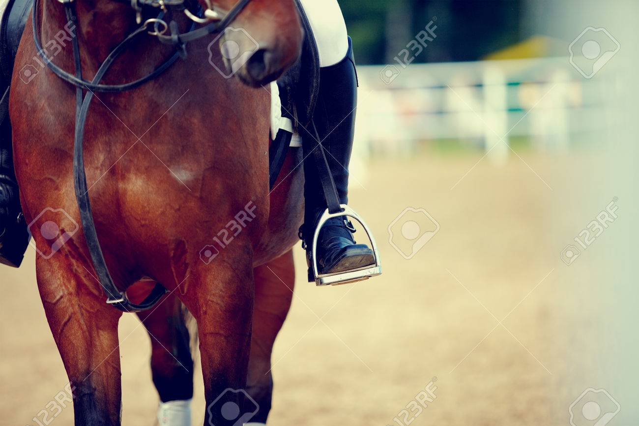 foot of the athlete in a stirrup astride a horse banco de imagens