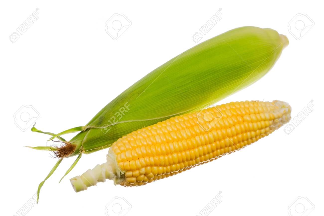 Fresh corn isolated on white background. - 146177093