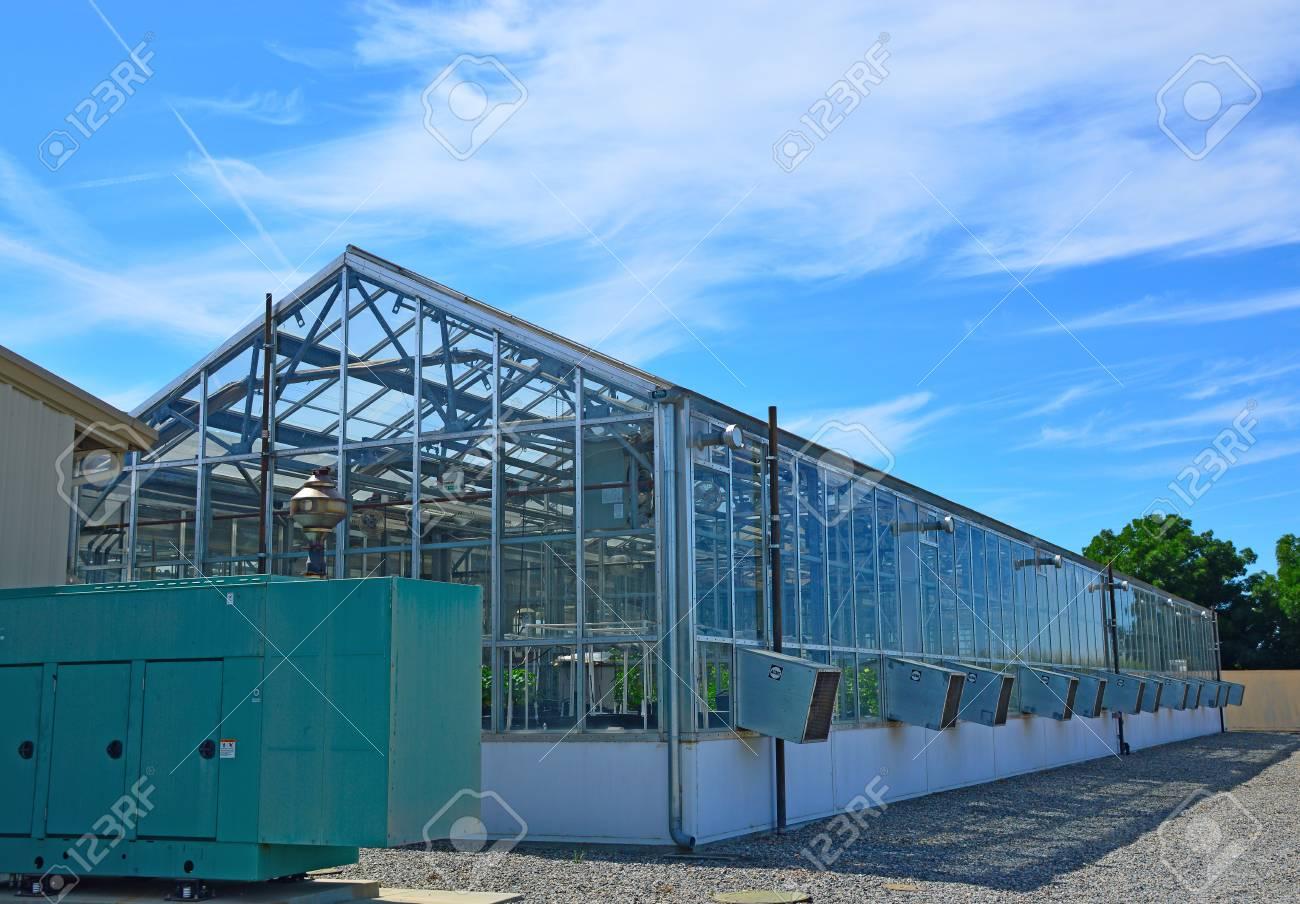 Gewachshaus Mit Dem Okosystem Von Glas Und Metall Mit Pflanzen Im