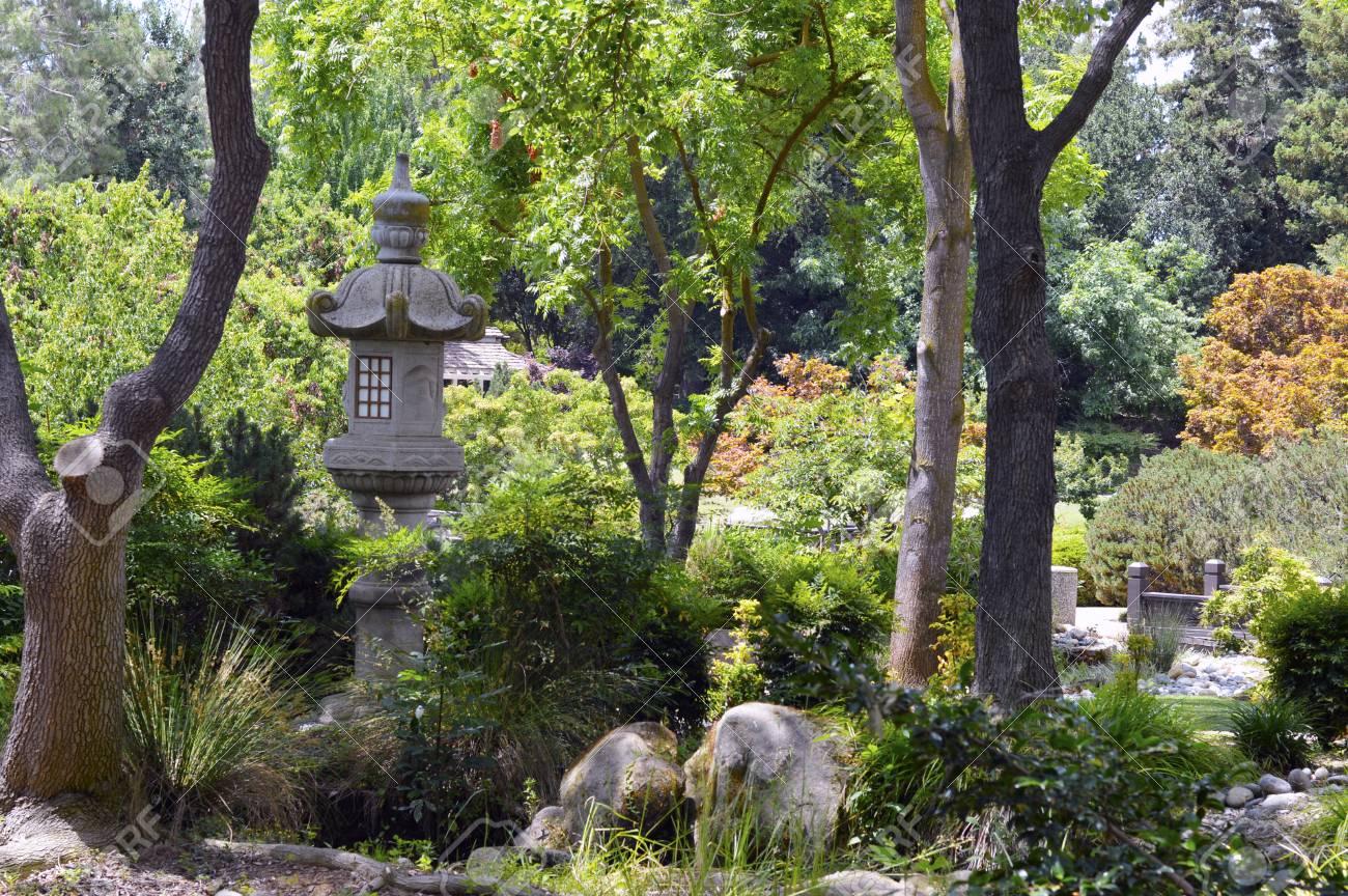 Japanischer Garten Mit Schönen Frischen Grünen Pflanzen Lizenzfreie
