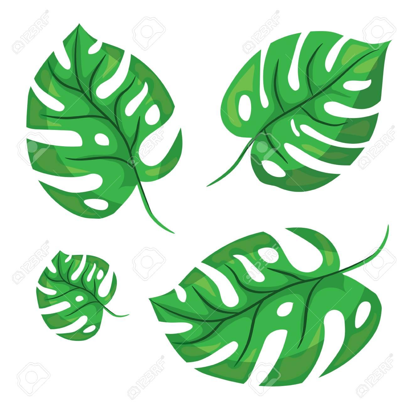 cartoon tropical palm leaves vector illustrated on white background rh 123rf com cartoon leaves wind cartoon leaves wind