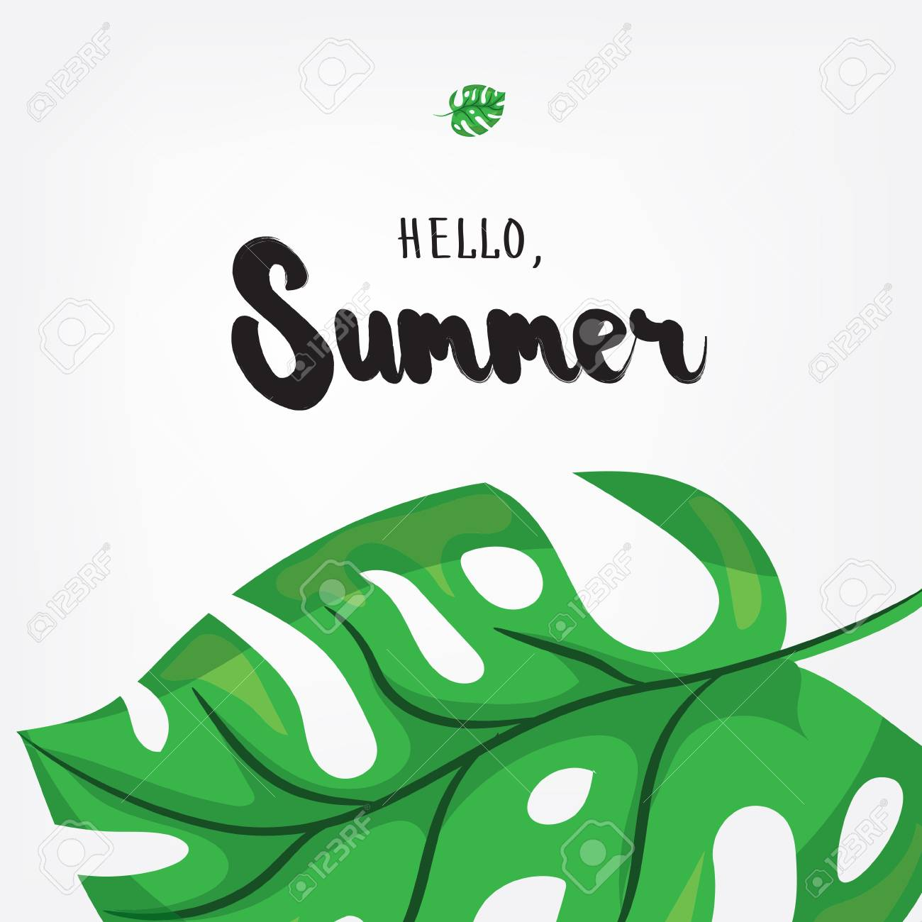 Hello, Summer. Holiday Greeting Card With Monstera Tropical Leaves And  Calligraphy Elements. Handwritten
