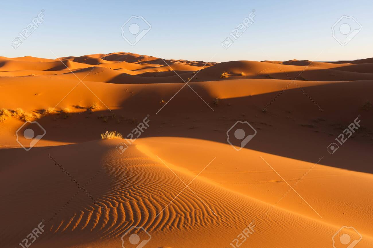the big sand dunes of Erg Chebbi, Morocco, offer an amazing sight of waves and shapes and changing golden, red and orange colors during dusk and sunset - 121716429
