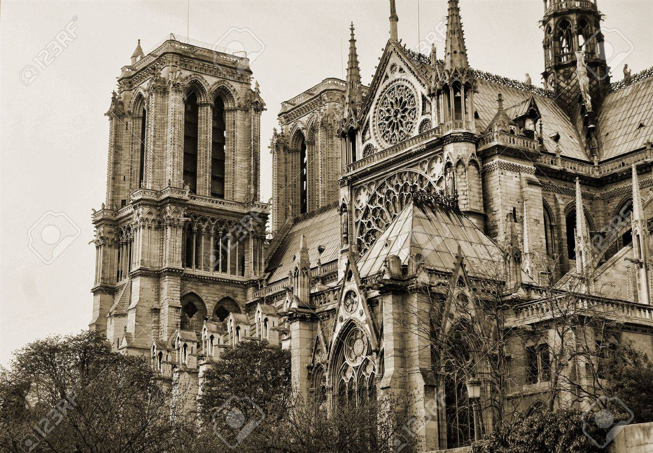 View On The Side Of Notre Dame In Sepia Paris