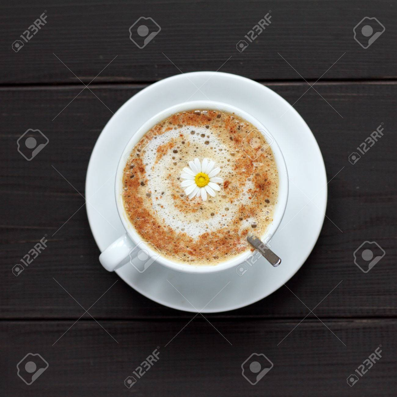 cup of frothy cappuccino warming decorated camomile top view / flower Coffee mood - 65204845
