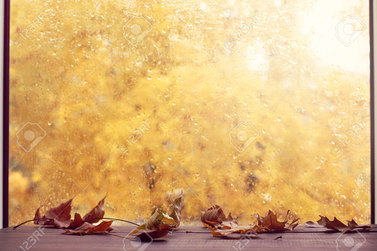 dry leaves on a background of a window with raindrops in autumn. stay at home in a comfortable environment - 172472020