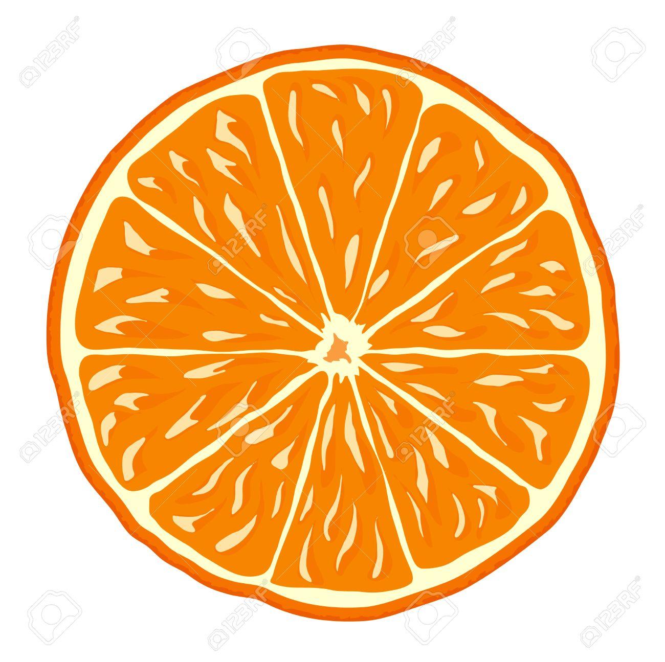 orange slice isolated vector background icon
