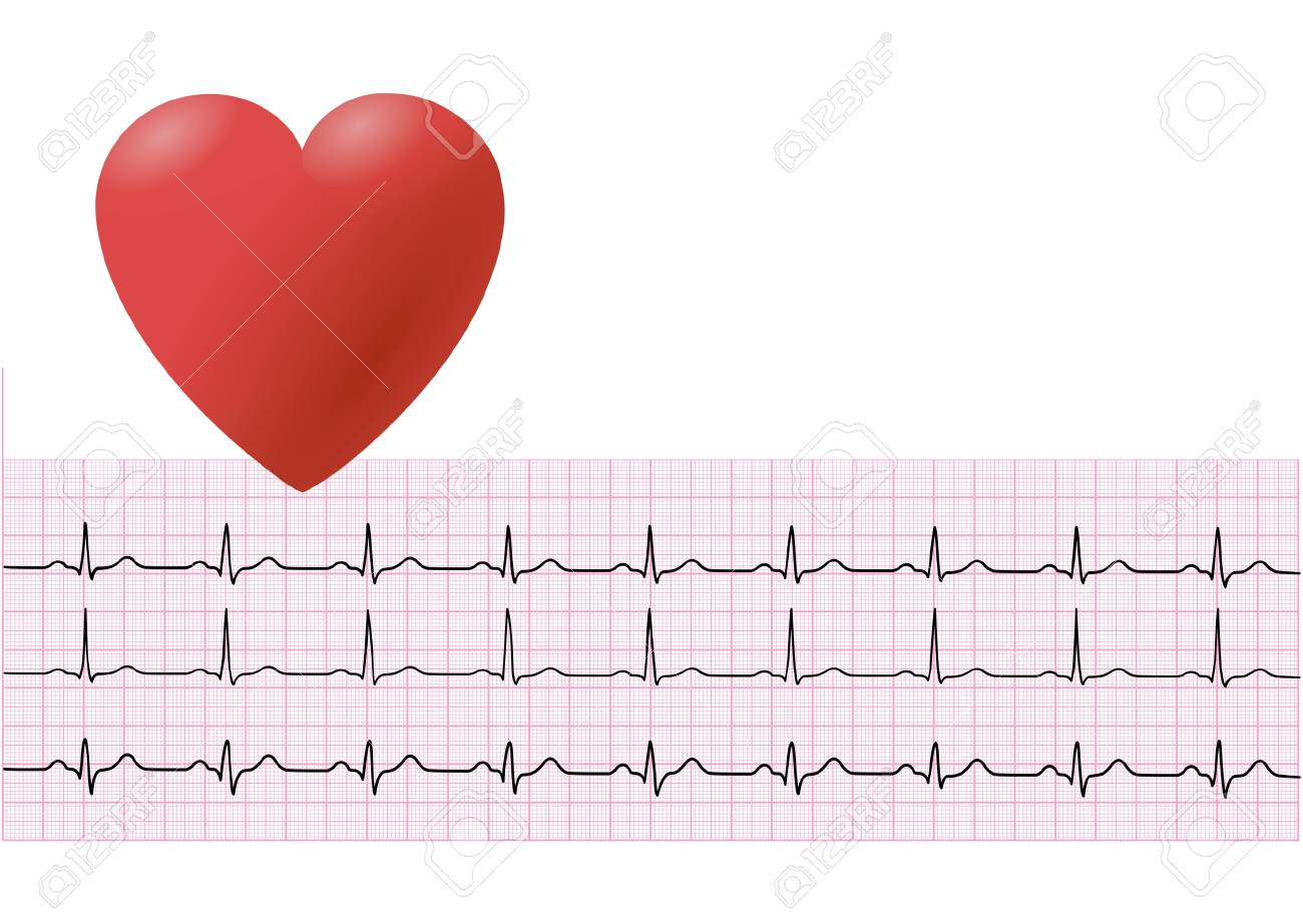 heart and electrocardiogram - 6732348