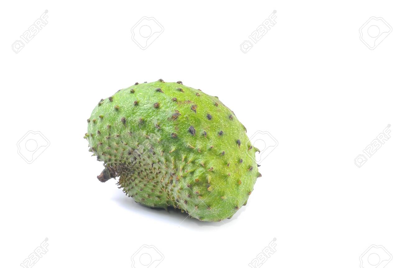 Soursop Prickly Custard Apple  Annona muricata L  Treatment of