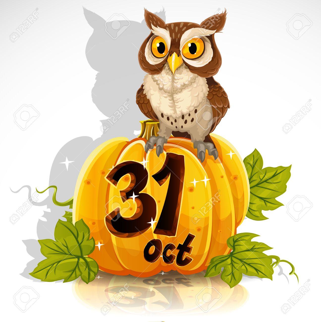Bir Kabak Bilge Baykuş Oturmak - Halloween Party 31 Ekim Royalty ...