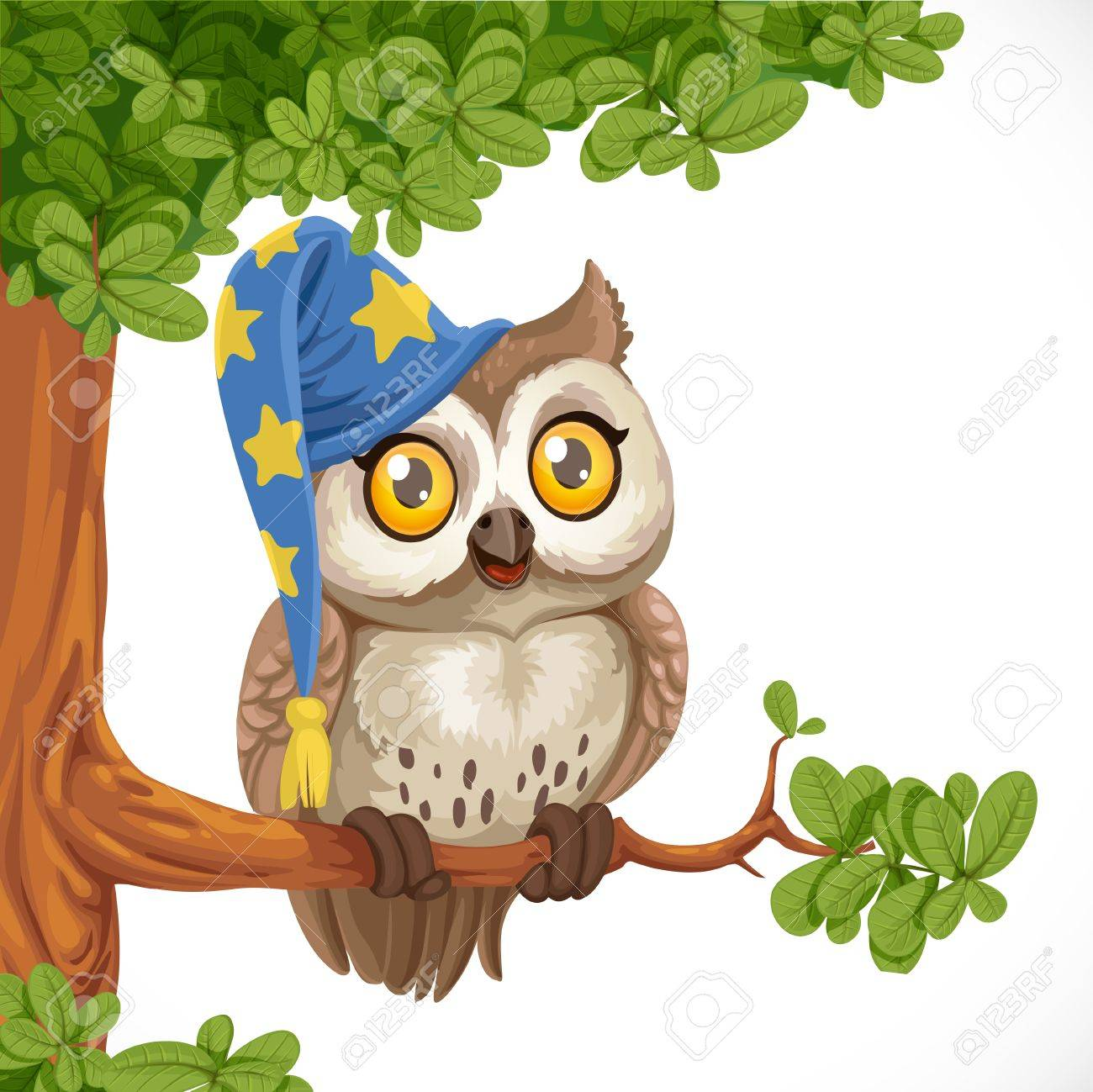 Cute owl wearing a hat sitting on a tree branch isolated on a white  background Stock d85f848f2fc3