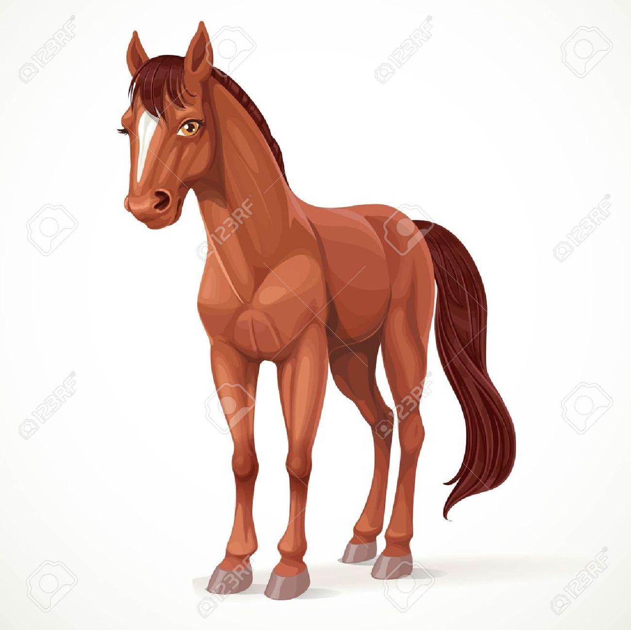 Bruin Paard Royalty-Vrije Foto's, Plaatjes, Beelden En Stock ...