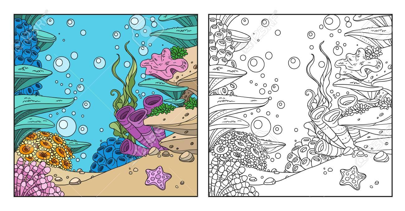 Monde Sous Marin Avec Les Coraux Les Algues Les Anemones Coloriage Sur Fond Blanc Clip Art Libres De Droits Vecteurs Et Illustration Image 83522737