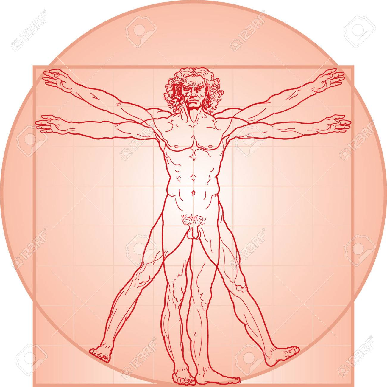 The Vitruvian Man Or So Called Leonardo Da Vinci Man Detailed