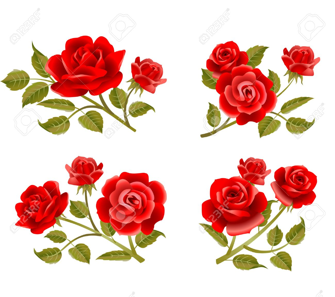 vector rose buttonholes with pink red and white roses royalty free rh 123rf com victor rose victor rose