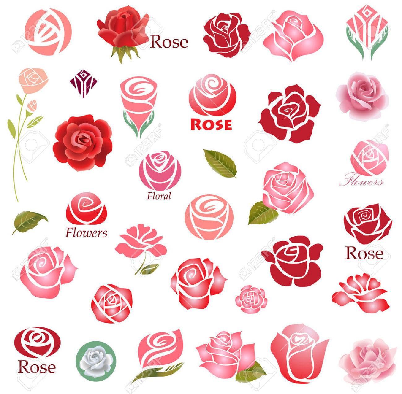 Set of rose flower design elements - 44440886