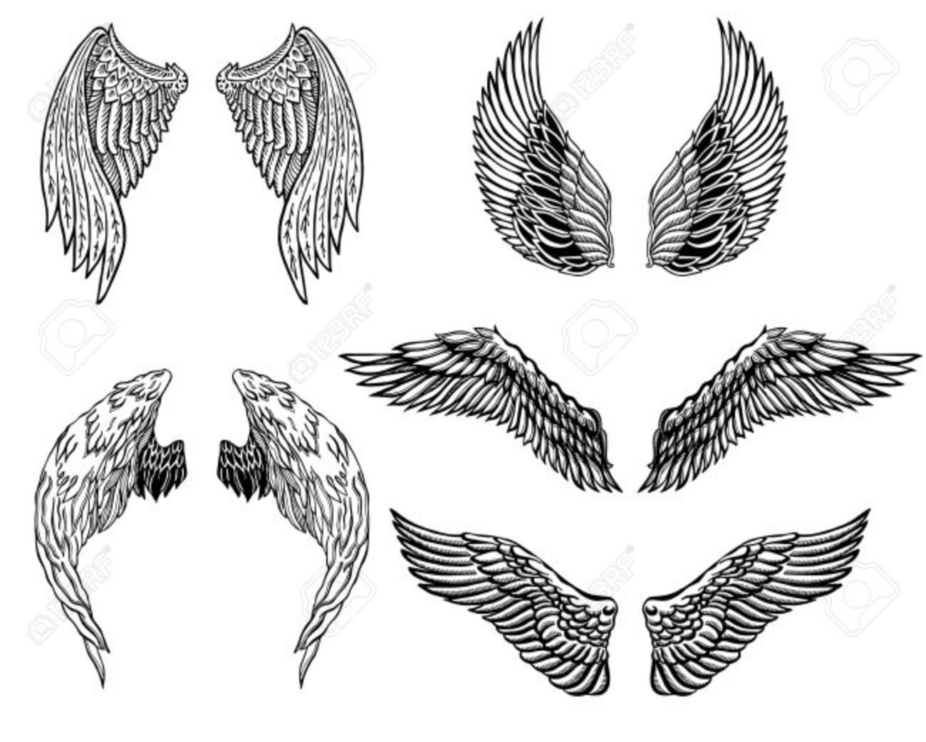 Heráldica Alas Fijadas Para El Tatuaje O Diseño De La Mascota