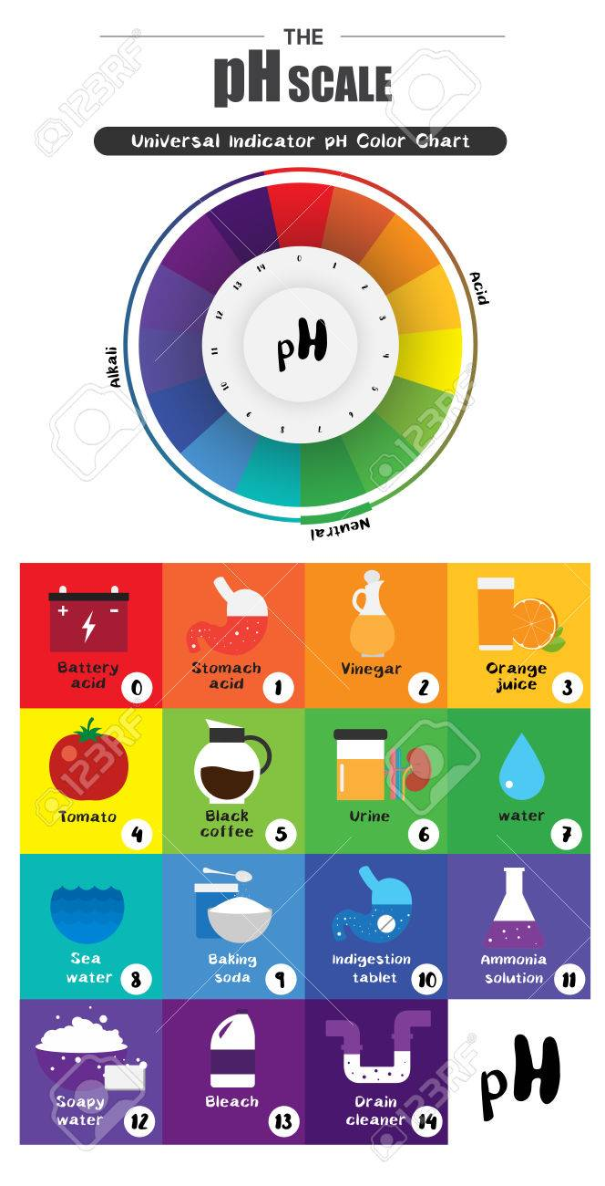 The PH Scale Universal Indicator PH Color Chart Diagram Acidic ... for Ph Scale Universal Indicator  83fiz