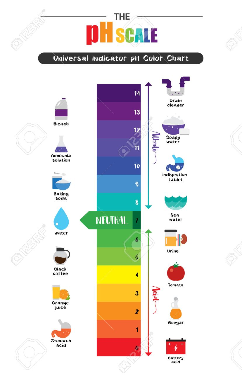 The PH Scale Universal Indicator PH Color Chart Diagram Acidic ... for Ph Scale Universal Indicator  165jwn