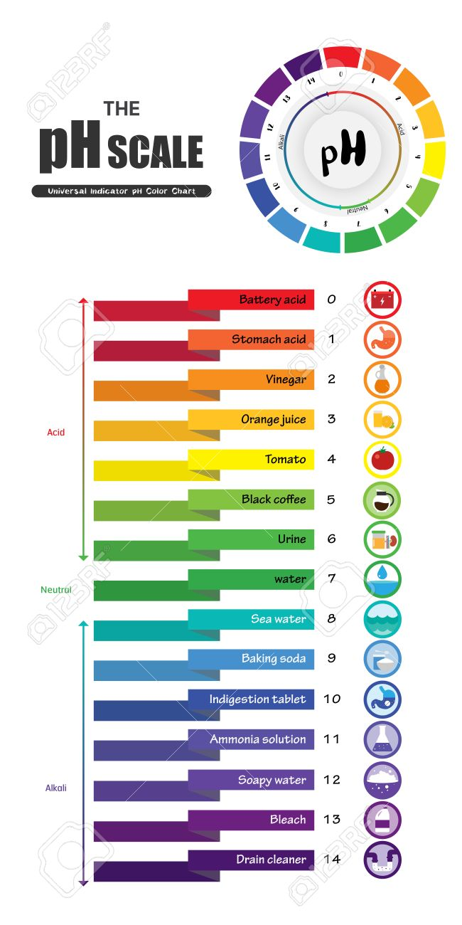 The ph scale universal indicator ph color chart diagram acidic the ph scale universal indicator ph color chart diagram acidic alkaline values common substances vector illustration nvjuhfo Gallery