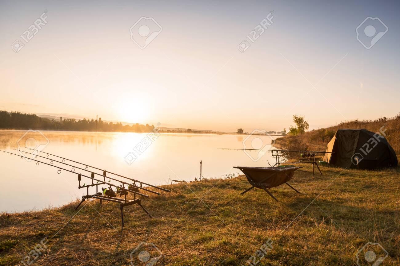 Fishing adventures, carp fishing. - 131527283