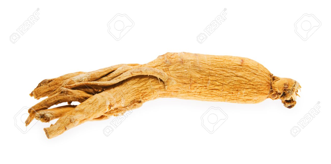 Ginseng root Stock Photo - 7099769