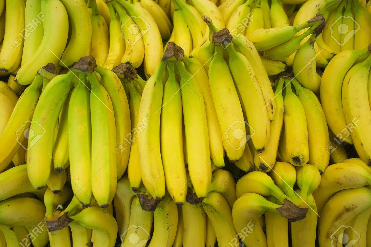 Bunch of bananas in a produce farm stand Stock Photo - 9787543