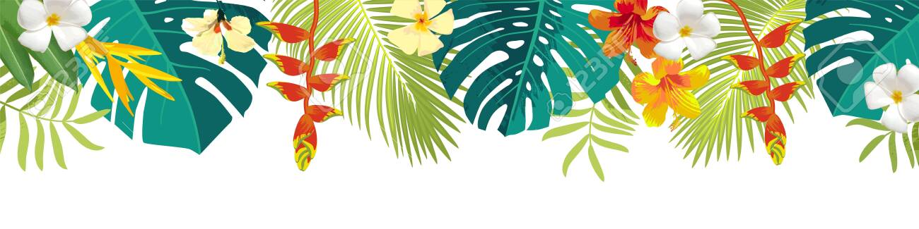 Tropical leaves and flowers border. Summer floral decoration. Horizontal summertime banner. Bright jungle background. Bright colors. Caribean beach party backdrop - 147564133