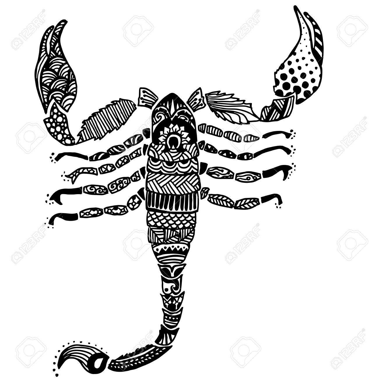 Diseño Del Doodle Del Escorpión Libro Para Colorear Para Adultos Ilustración Vectorial