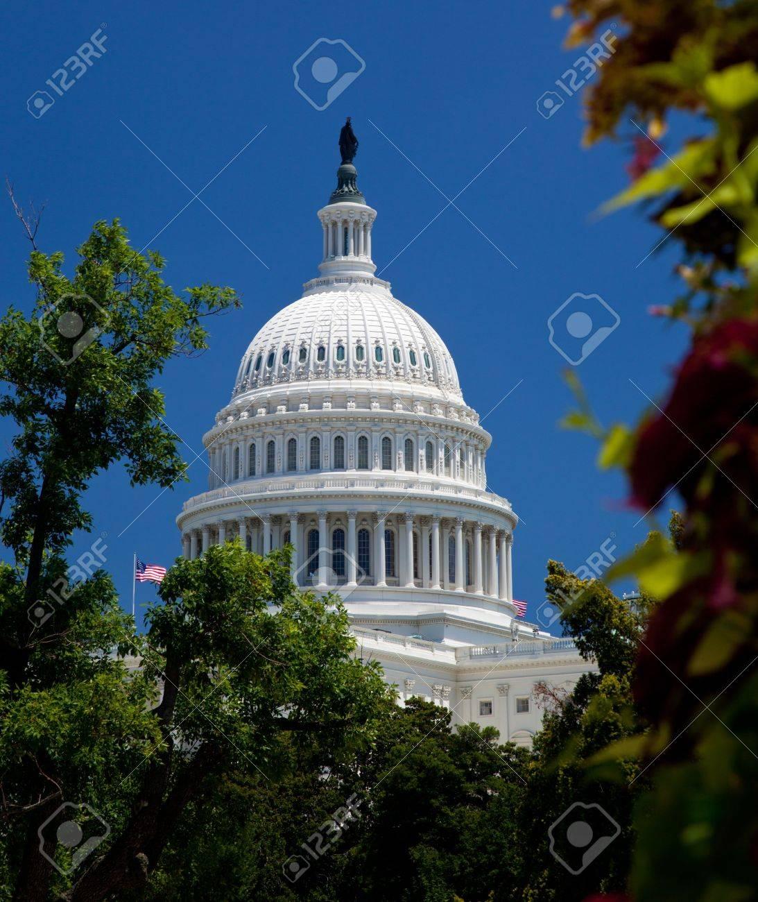Das Capitol Gebäude In Washington DC, Umrahmt Von Baum Mit Blumen Im ...