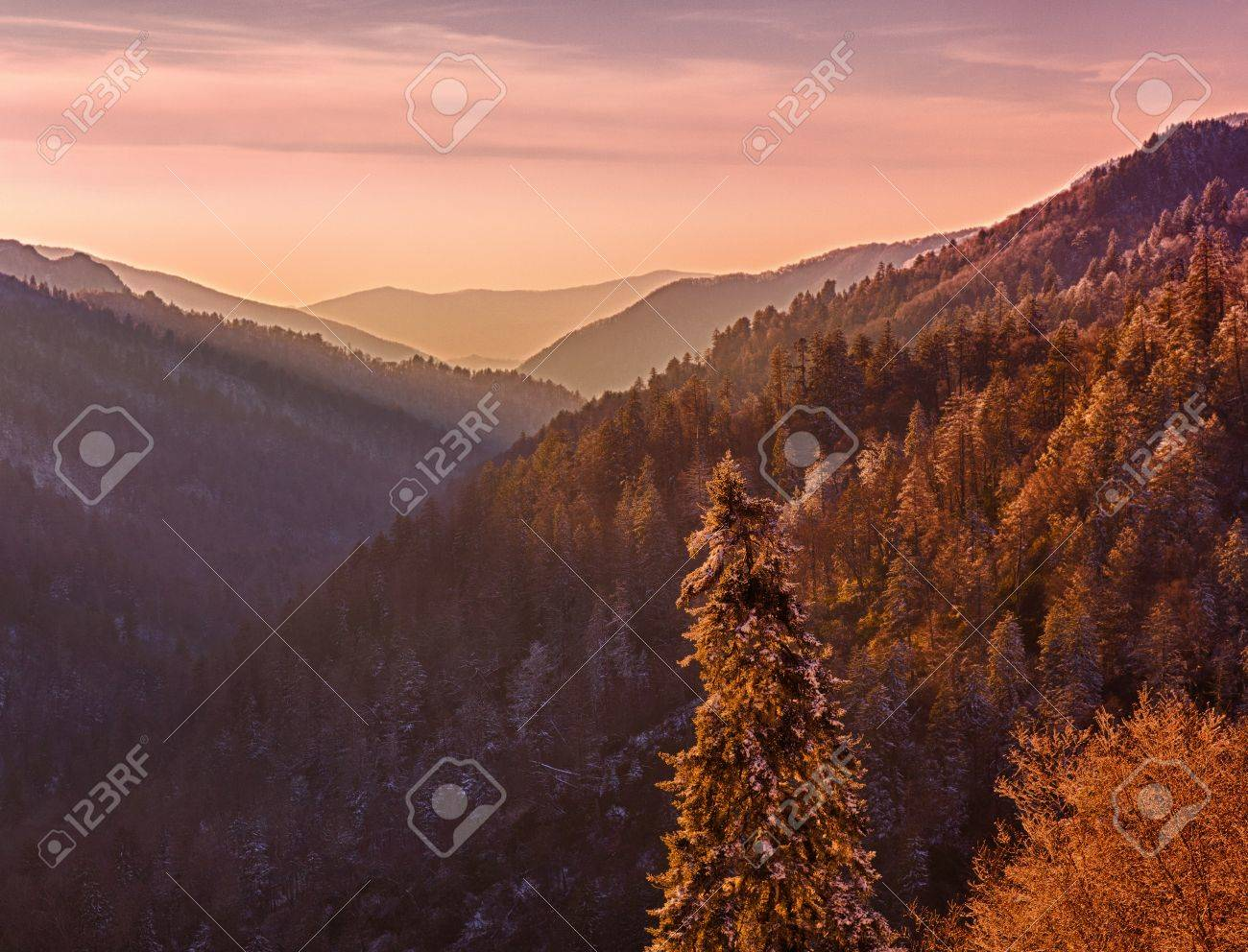 Sun setting in valley in Smokies as snow covers the branches of trees Stock Photo - 9046726