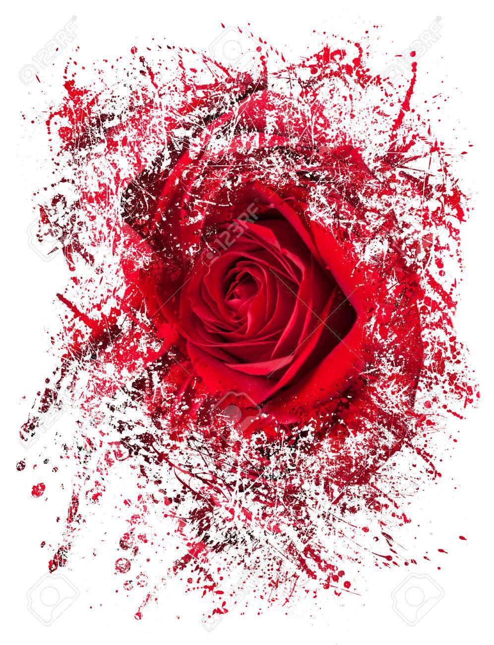 ベルベット赤バラ薔薇抽象的なイラストにデボルブと分裂またはおそらく
