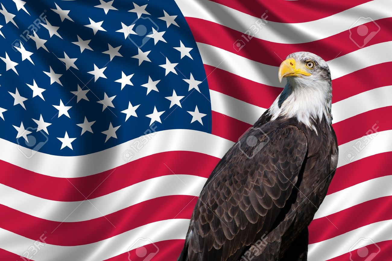 Zendha American Flag Wallpaper