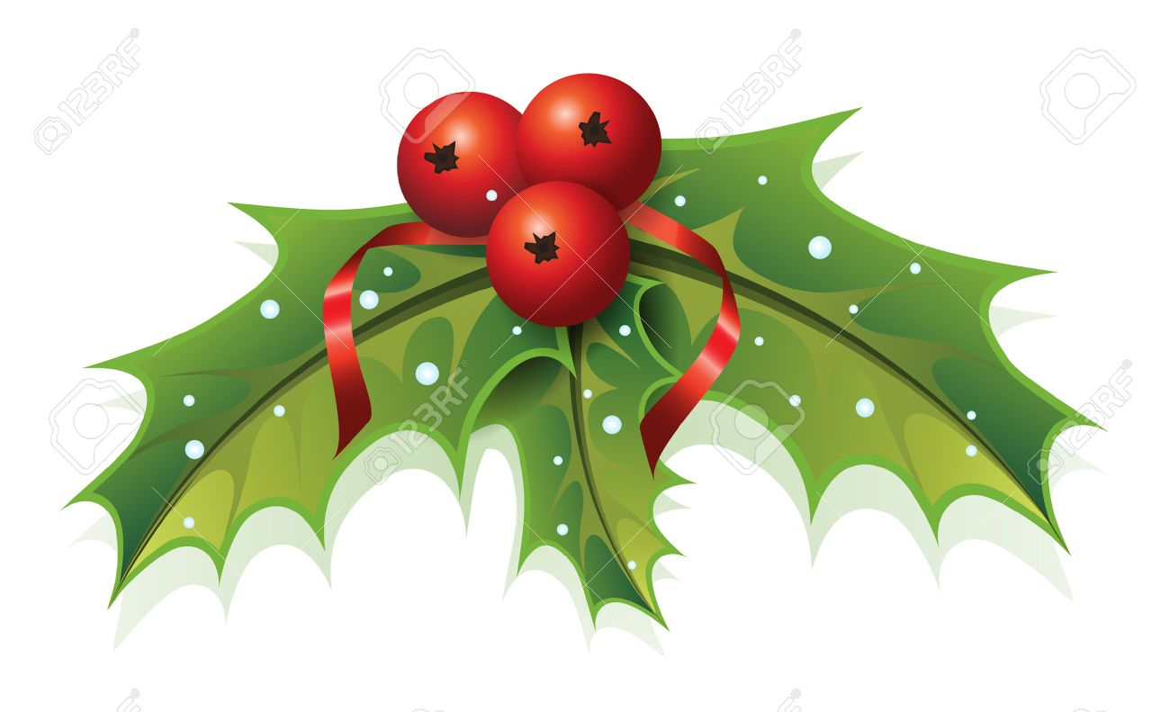 This image is a vector file representing a Holly Christmas Plant. - 23109545