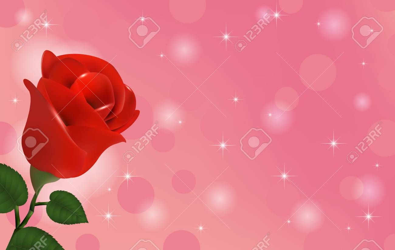 Beautiful Wallpaper With Flower Red Rose Stock Photo Picture And