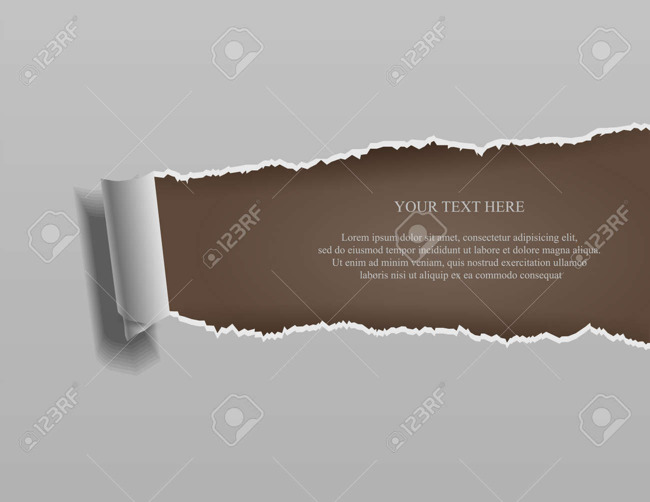 Realistic torn paper with rolled edges on brown background - 168266715