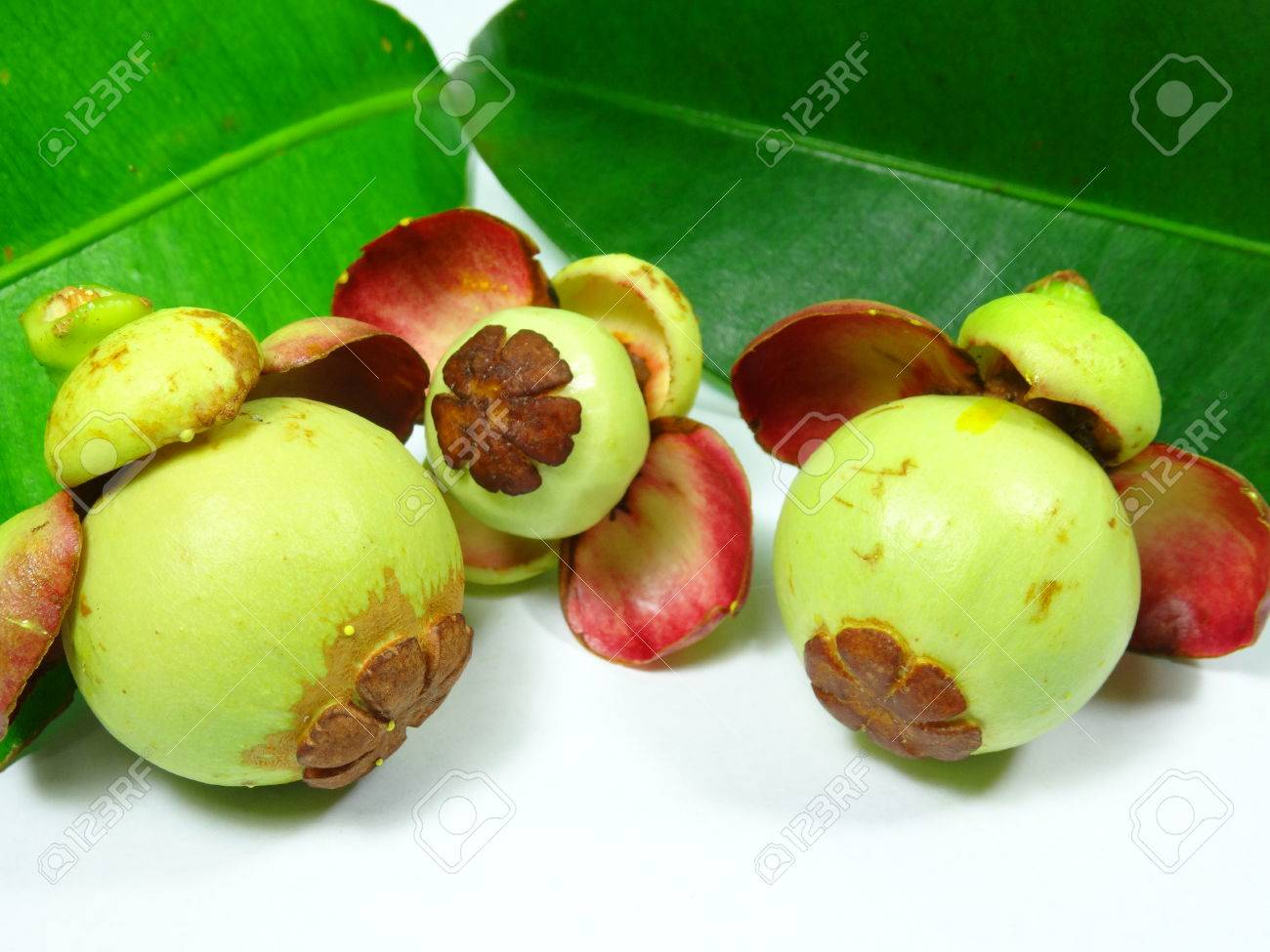 Natural pain relief mangosteen