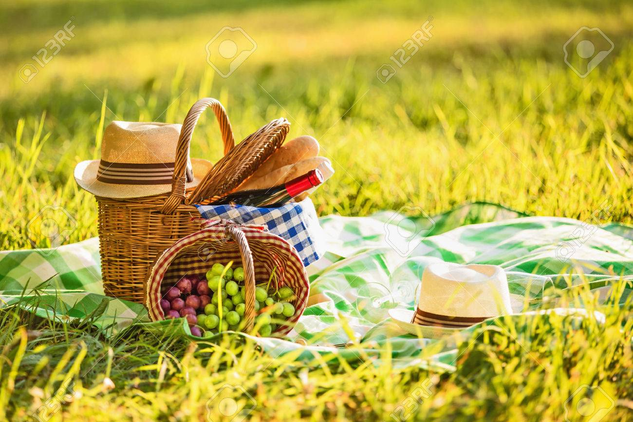 Picnic with wine and grapes in nature Standard-Bild - 43724841