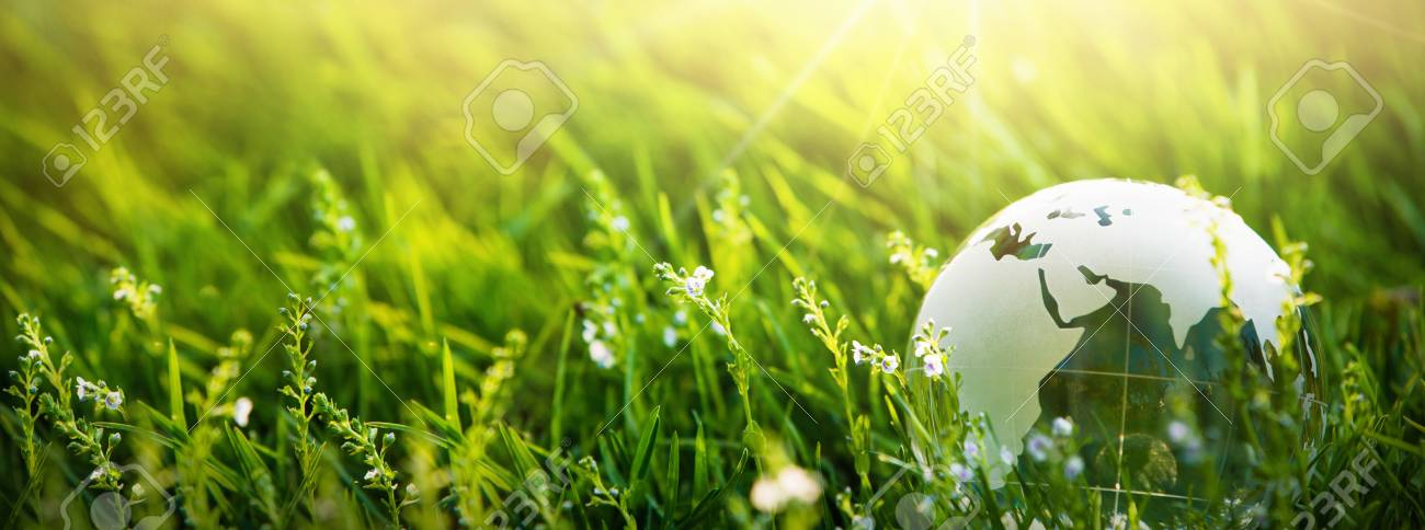 Glass Globe in the Grass. Green Planet Concept for Environment - 124935944