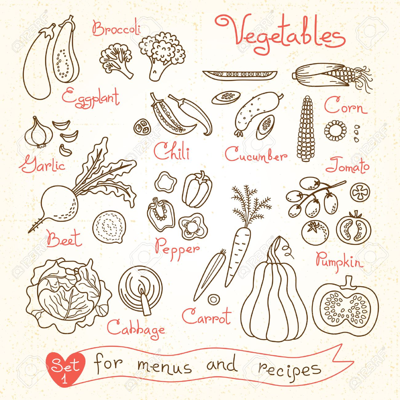 Set drawings of vegetables for design menus, recipes and packages product. Vector Illustration. - 41073960