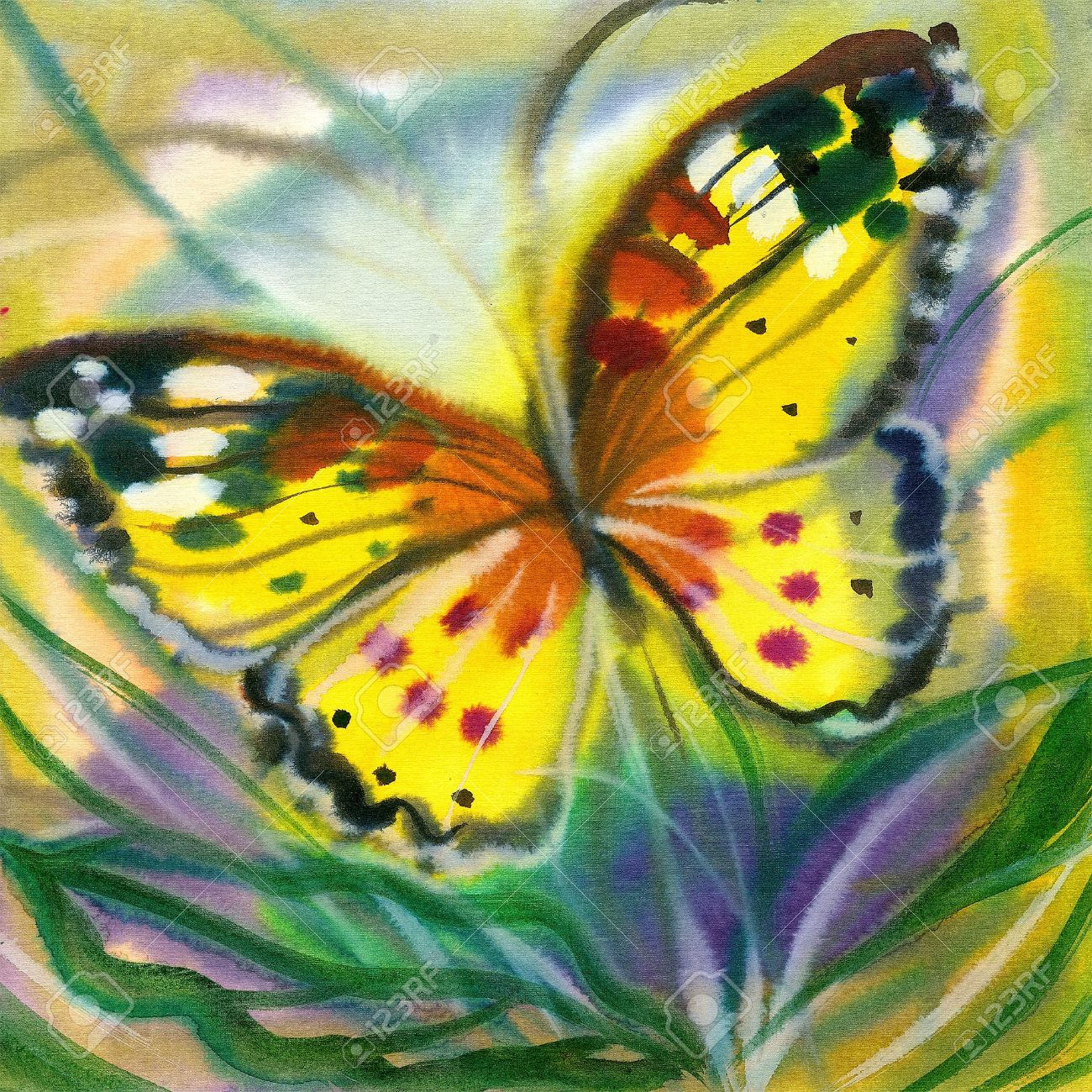 The yellow-red butterfly in flight Stock Photo - 8737706
