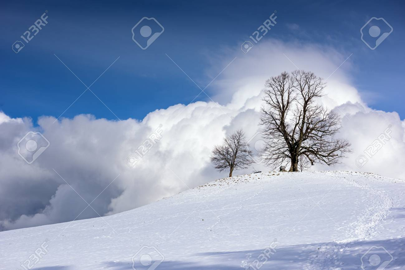 Beautiful Snowy Mountain Landscape After Snowfall On A Sunny Winter Day Stock Photo