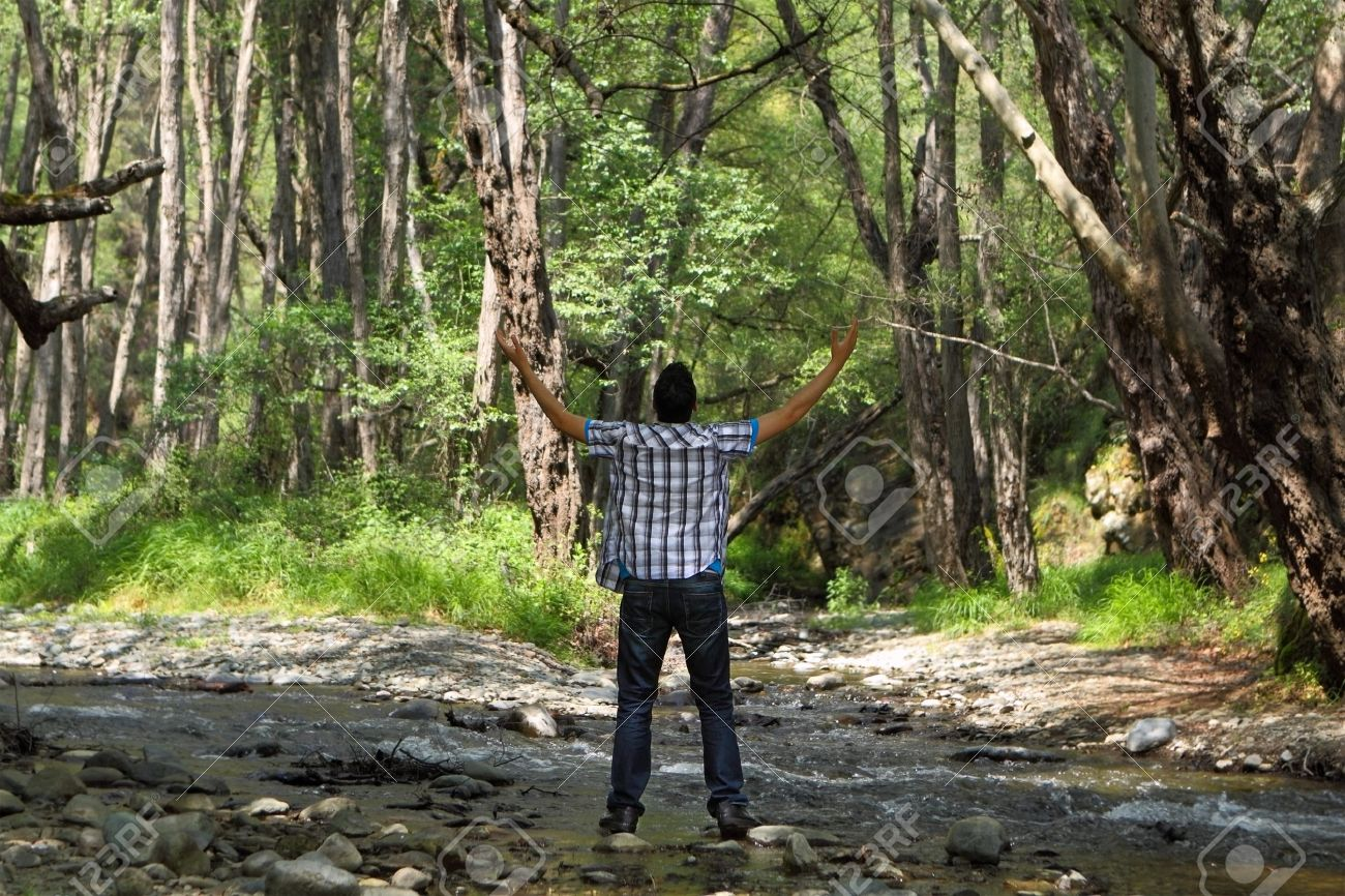 Behind view of a man standing in the forest with arms lifted up Stock Photo - 9540437