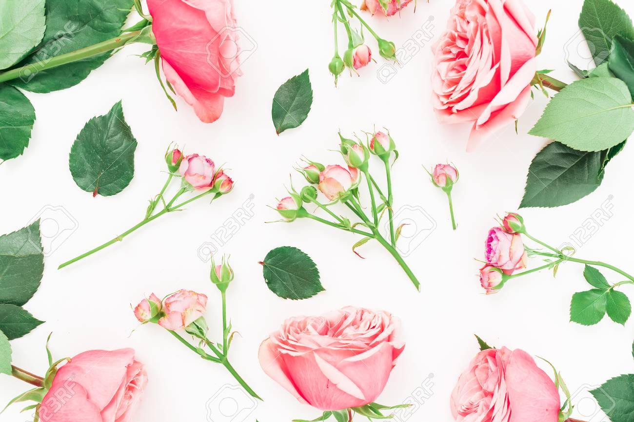 Patrón Floral Hecho De Rosas Rojas O Rosadas, Brotes Y Hojas Sobre ...