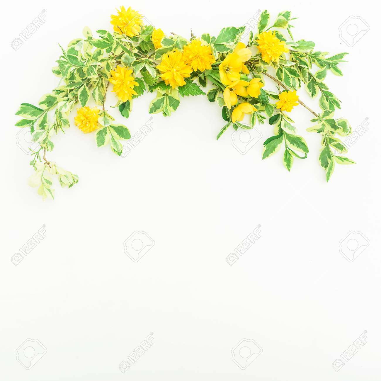 Floral Frame Made Of Branches With Yellow Flowers On White