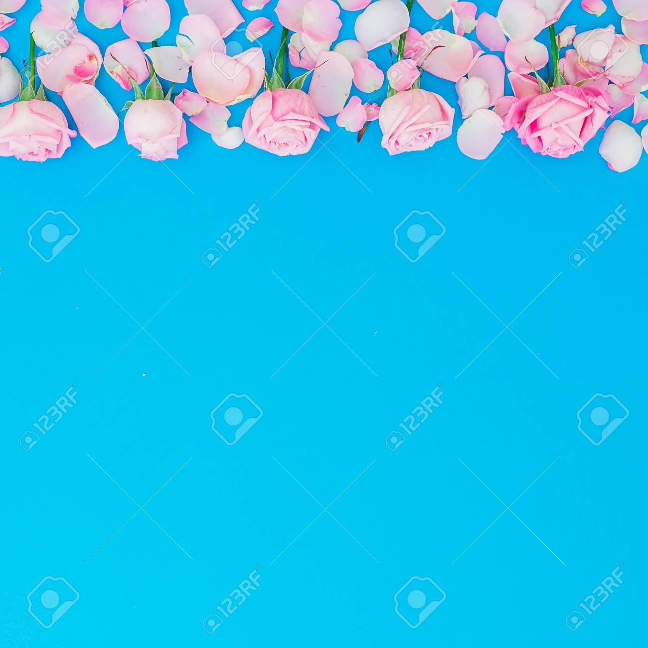 15331e3117473 Floral Frame Of Roses Buds And Petals On Blue Background. Flat ...