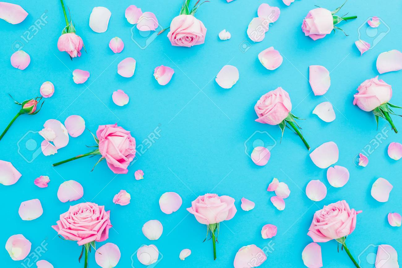 d6f7a3ceb2c96 Floral frame made of pink roses buds and petals on blue background. Flat  lay