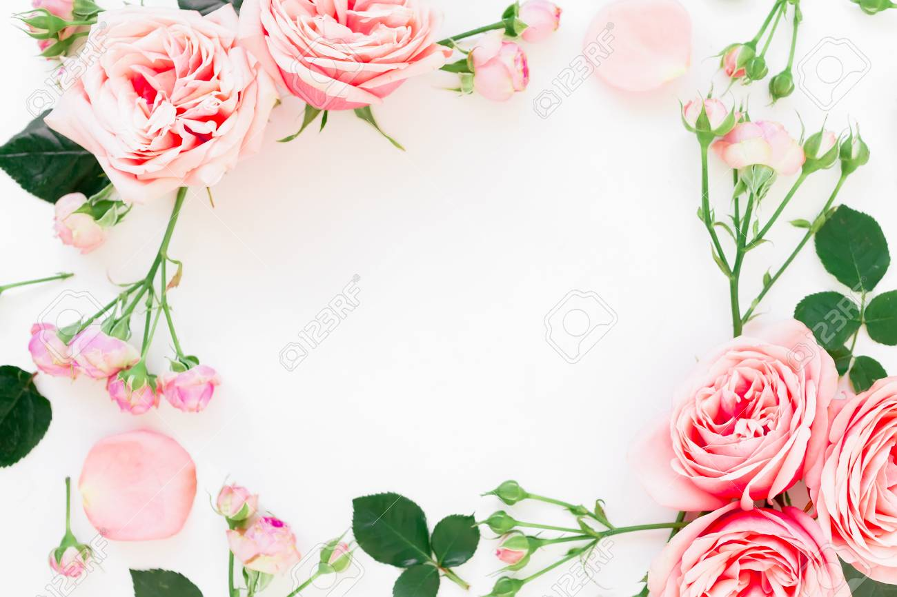 Stylish Frame Made Of Pink Roses Buds And Petals On White
