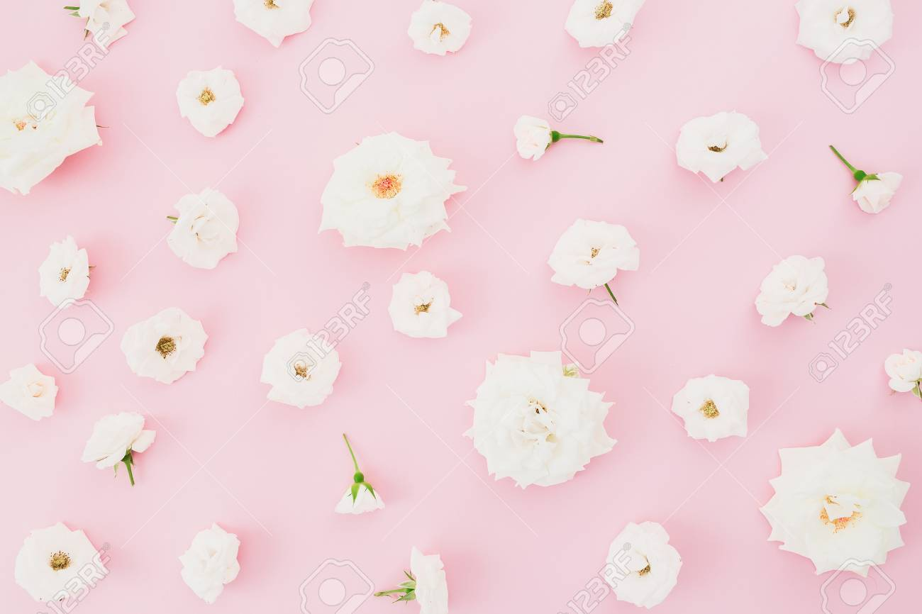 Floral Pattern With White Roses On Pink Background Flat Lay