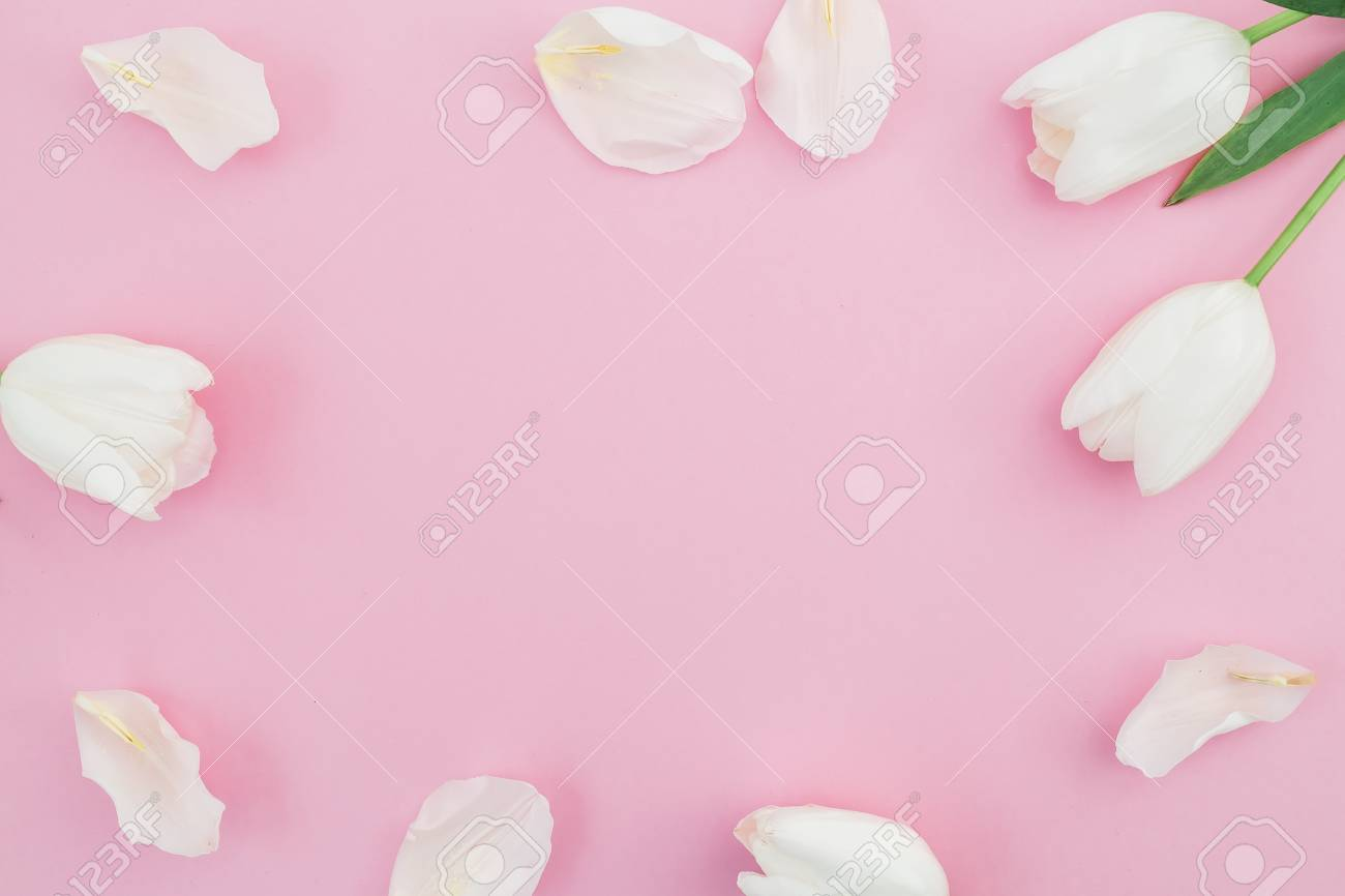 Floral Background With White Tulips Flowers On A Pink Pastel Stock
